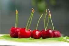 Free Sweet Cherry Royalty Free Stock Photo - 9810365