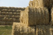 Free Straw Sheaves Stock Image - 9812641