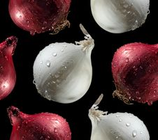 Free Red And White Onions Royalty Free Stock Image - 9813446