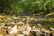 Free River Stock Images - 9813924