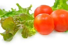 Free Fresh Vegetables Stock Image - 9813971