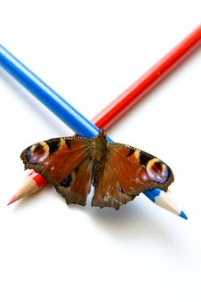 Free Butterfly And Color Pencils Royalty Free Stock Images - 9814579