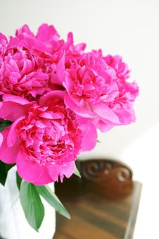 Free Pink Peony Royalty Free Stock Photography - 9818217