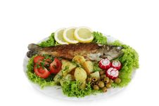 Free Baked  Trout Royalty Free Stock Photo - 9822715