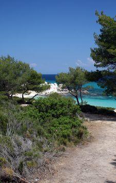 Free Tropical Scene Of Seashore Stock Photo - 9822970
