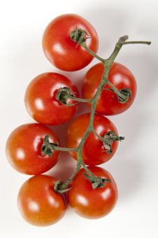 Free Ripe Red Tomatoes Royalty Free Stock Photography - 9823527