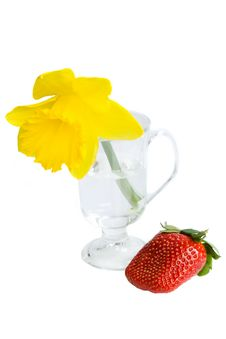 Free Daffodil And Strawberry Royalty Free Stock Image - 9823576