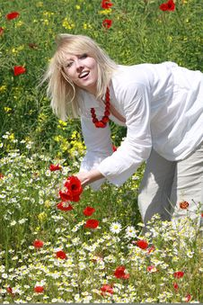 Free The Blonde On The Meadow Stock Images - 9823954