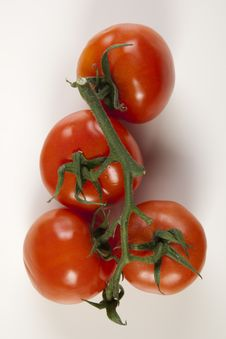 Free Ripe Red Tomatoes Royalty Free Stock Images - 9824119