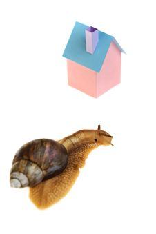 Free Snail Home Stock Image - 9833251