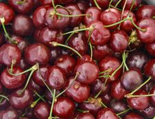 Free Cherries With Stalks Stock Photography - 9833652