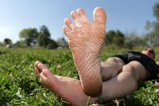 Free Resting On Lawn Stock Photography - 9834392