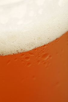Free Beer Glass Royalty Free Stock Images - 9835409
