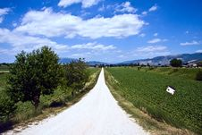 Free Dirt Road In Italy Royalty Free Stock Photos - 9837438