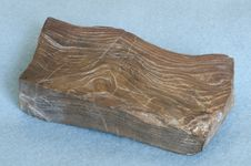 Free Dark Brown Petrified Wood Royalty Free Stock Image - 9838356