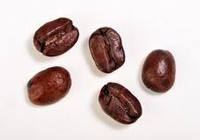 Free Coffee Beans Stock Images - 9839224