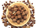 Free Nuts In A Wooden Plate On A White Background. Royalty Free Stock Photos - 9847518