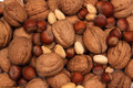 Free Nuts Royalty Free Stock Photography - 9847657