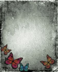 Free Grunge Butterfly Royalty Free Stock Photography - 9846057
