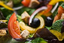 Free Salad Royalty Free Stock Image - 9849276