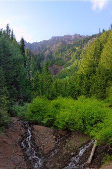 Free Mountainside Stream Stock Photo - 9849470
