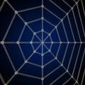 Free Spider Net Stock Image - 9850211