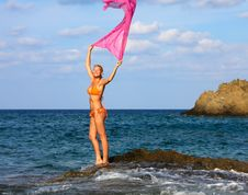 Free Beautiful Woman Enjoying The Breeze By The Sea Royalty Free Stock Photography - 9851357