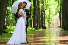 Free Just Married Under Rain Royalty Free Stock Photography - 9854257
