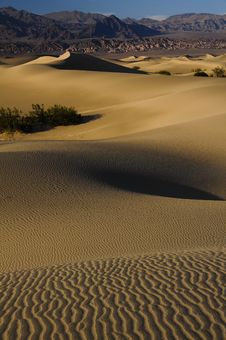 Free Death Valley, Sand Dunes Royalty Free Stock Photo - 9857535