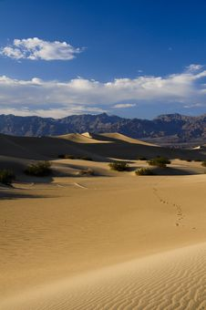 Free Death Valley, Sand Dunes Royalty Free Stock Images - 9857569