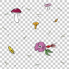 Free Seamless Pattern With Mushrooms And Dog Rose Stock Photos - 98555893