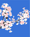 Free Apple Tree Branch Stock Photos - 9862293