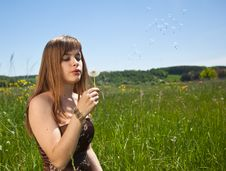 Free Young Girl Blowing On Dandelion Royalty Free Stock Photography - 9862087