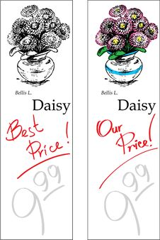 Free Daisy - Two Price Tags Stock Photography - 9862432