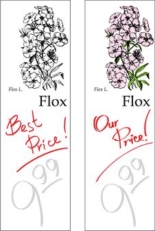Free Flox - Two Price Tag Stock Images - 9862434