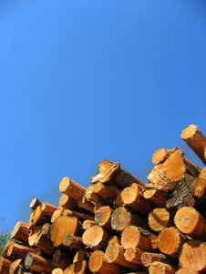 Free Drying Red Logs. Stock Photography - 9864782