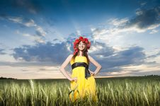 Free Beautiful Young Girl In The Wheat Field Royalty Free Stock Photography - 9866267
