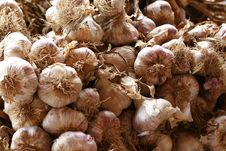 Free Garlic Stock Photo - 9867460
