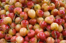 Free Fresh Cherries Royalty Free Stock Images - 9870699