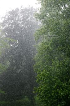 Free Torrential Rain Stock Images - 9872954