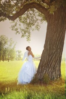 Free Angel Bride With Tree Stock Photos - 9873223