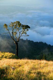 Free View From Gunung Rinjani Royalty Free Stock Image - 9875766