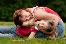 Free We Eating Grass Royalty Free Stock Photo - 9876035