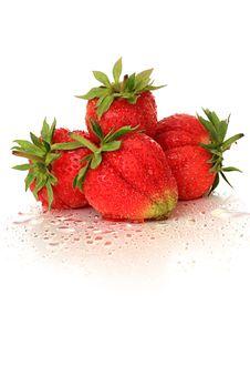 Free Strawberry. Stock Photo - 9876270