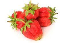 Free Strawberry. Royalty Free Stock Photos - 9876288