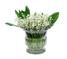 Free Bouquet Of Lily Of The Valley Stock Images - 9877274