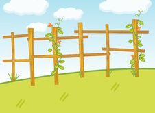 Free Creeping  Plant On Fence Stock Image - 9878551
