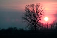 Free Sunset Stock Photo - 9879710
