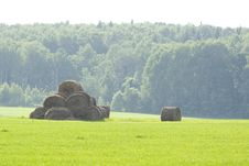 Free Hay Stacks Stock Photo - 9879830