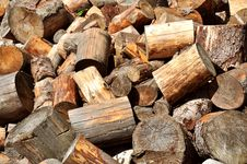 Free Chopped Wood Royalty Free Stock Image - 9879996
